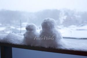 関東大雪2014