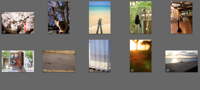 2014年フォトコンテスト応募作品!日の目を見ることがなかったので、せめてこのブログで(涙)