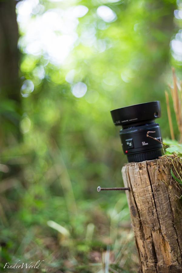 EOS 6D:EF50mm F1.8 STM